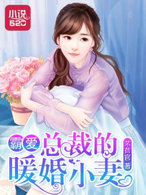 霸爱:总裁的暖婚小妻